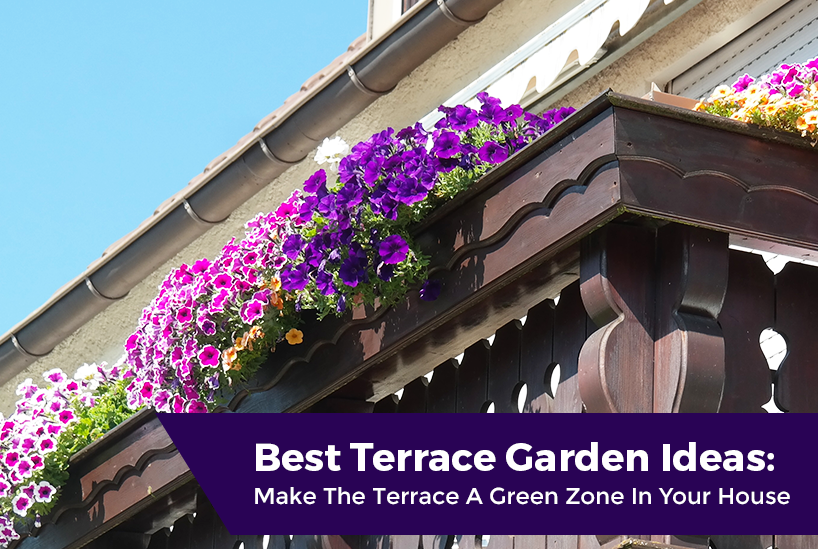 Best Terrace Gardening Ideas In Kerala Make The Terrace A Green Zone In Your House Calicut Real Estate Blog Hilite Builders